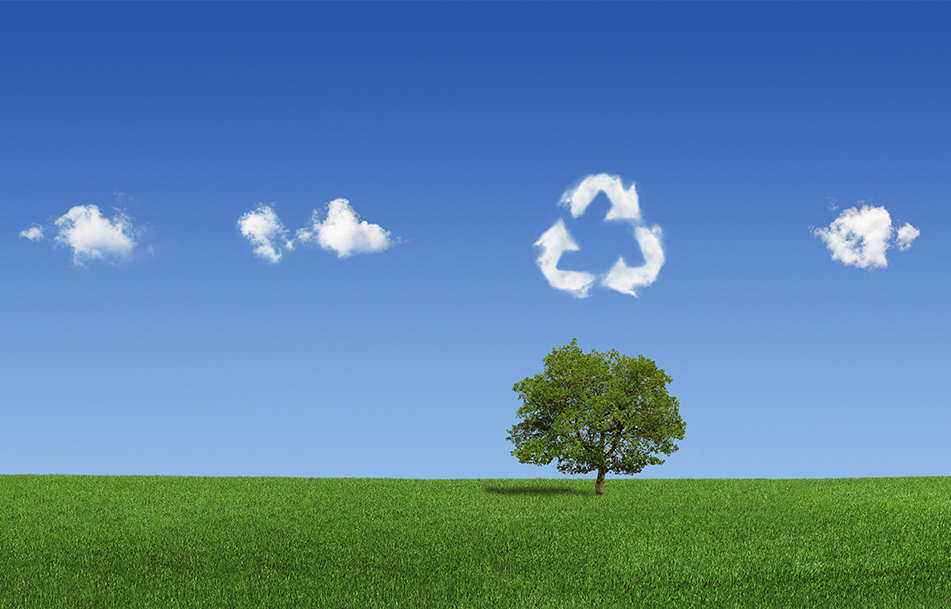 Eco-organisme